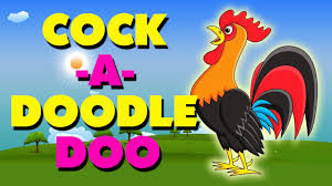 cock a doodle doo